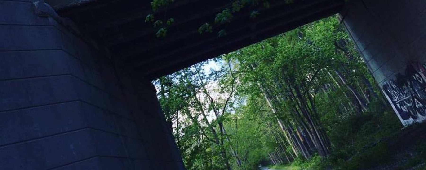 cropped-cropped-bridge.jpg
